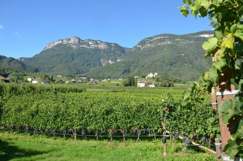 Family traditions on the fruit farm in Appiano